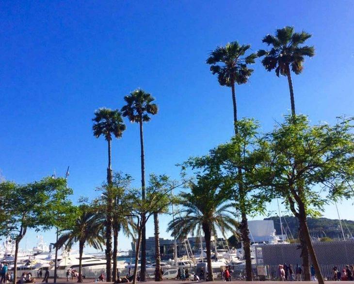 Cosa fare a Barcellona: le nostre migliori dritte per scoprire la città